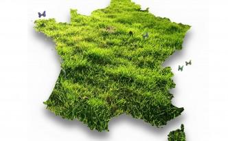 France herbue