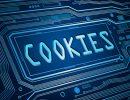 Cookies : focus sur les contrôles Cnil 2015