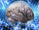 Interfaces neuronales : enjeux juridiques et perspectives